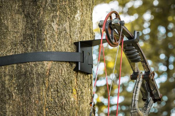 Bow Hanger - On Your Tree In Seconds